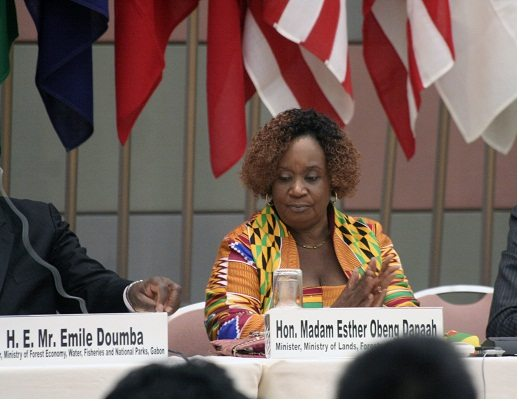NPP Affirmative action policy cost defeat of sitting female MPs – Esther Obeng Dapaah