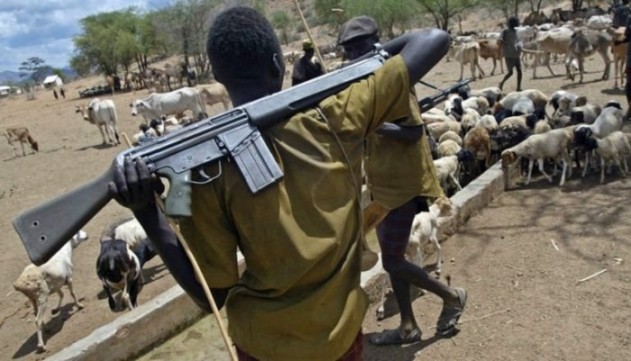 We can't move our cattle from Agogo – Cattle Owners Association