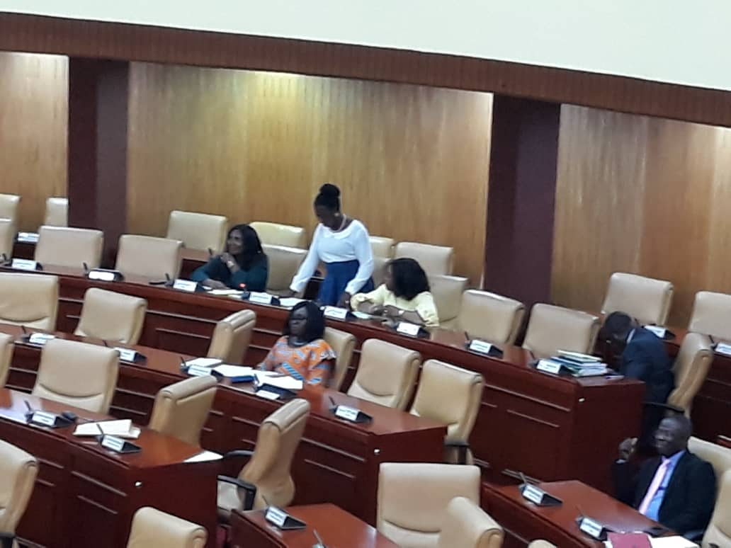 MPs go gaga over Ama Sey's contribution on birth control methods