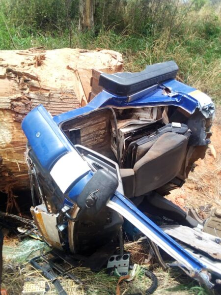 E/R: Timber falls from truck; one dead, another in critical condition [ PHOTOS ] 3